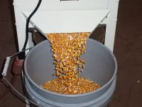 Clean Corn                     Discharge of Shur-Kleen Corn Cleaner